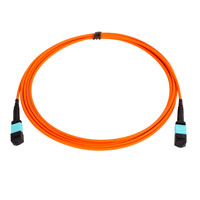 MPO MTP Cable Assembly